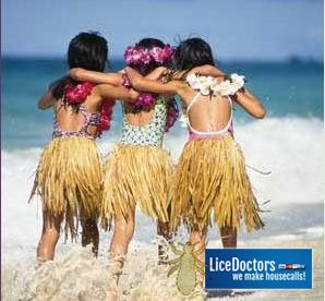 Head Lice (Ukus) in Hawaii