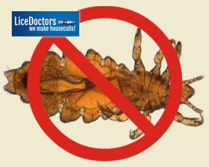 Miami-Dade County School Lice Policy