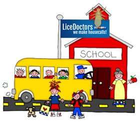 Westchester / Rockland Counties School Lice Policy