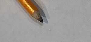 lice egg camouflage blonde brown hair dark spots on hair