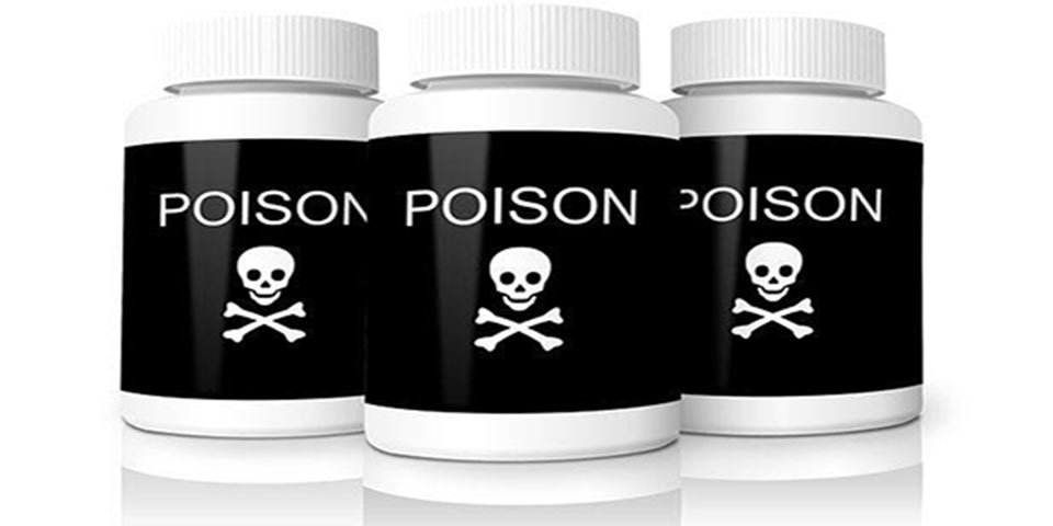 call exterminator for head lice home yard pesticide spray home toxic