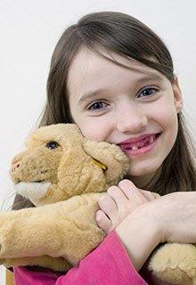 stuffed animals head lice toys safe children clear