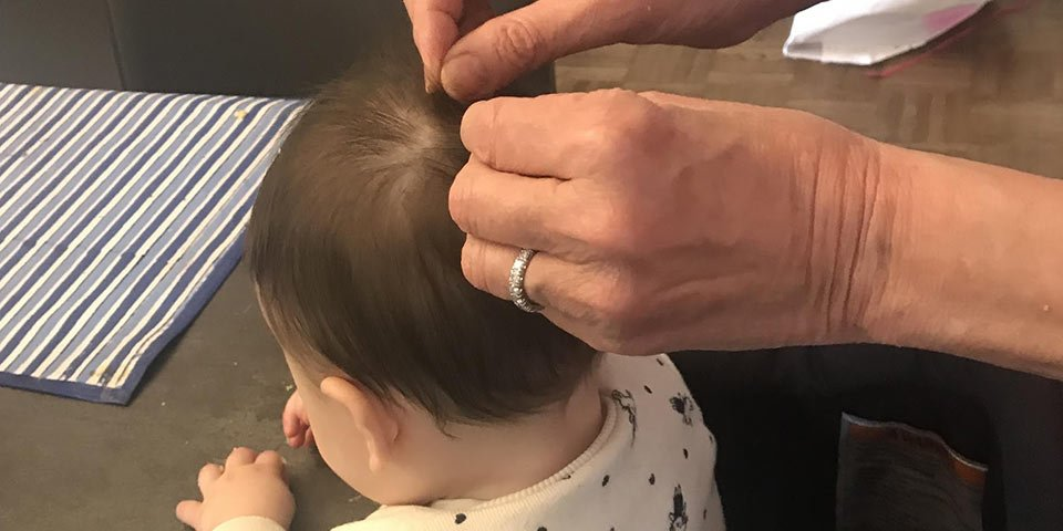 roslyn lice removal treatment client technician reassure infant family