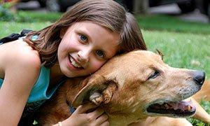 anchorage-lice-removal-pet-dog-hugging
