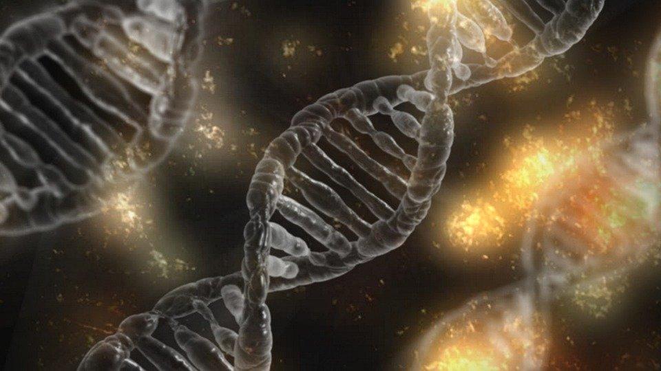 soft focus double helix DNA on dark sparkley background.