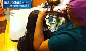 birmingham professional mobile head lice treatment technician