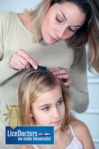how to identify case of head lice
