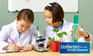 Two girls at a microscope