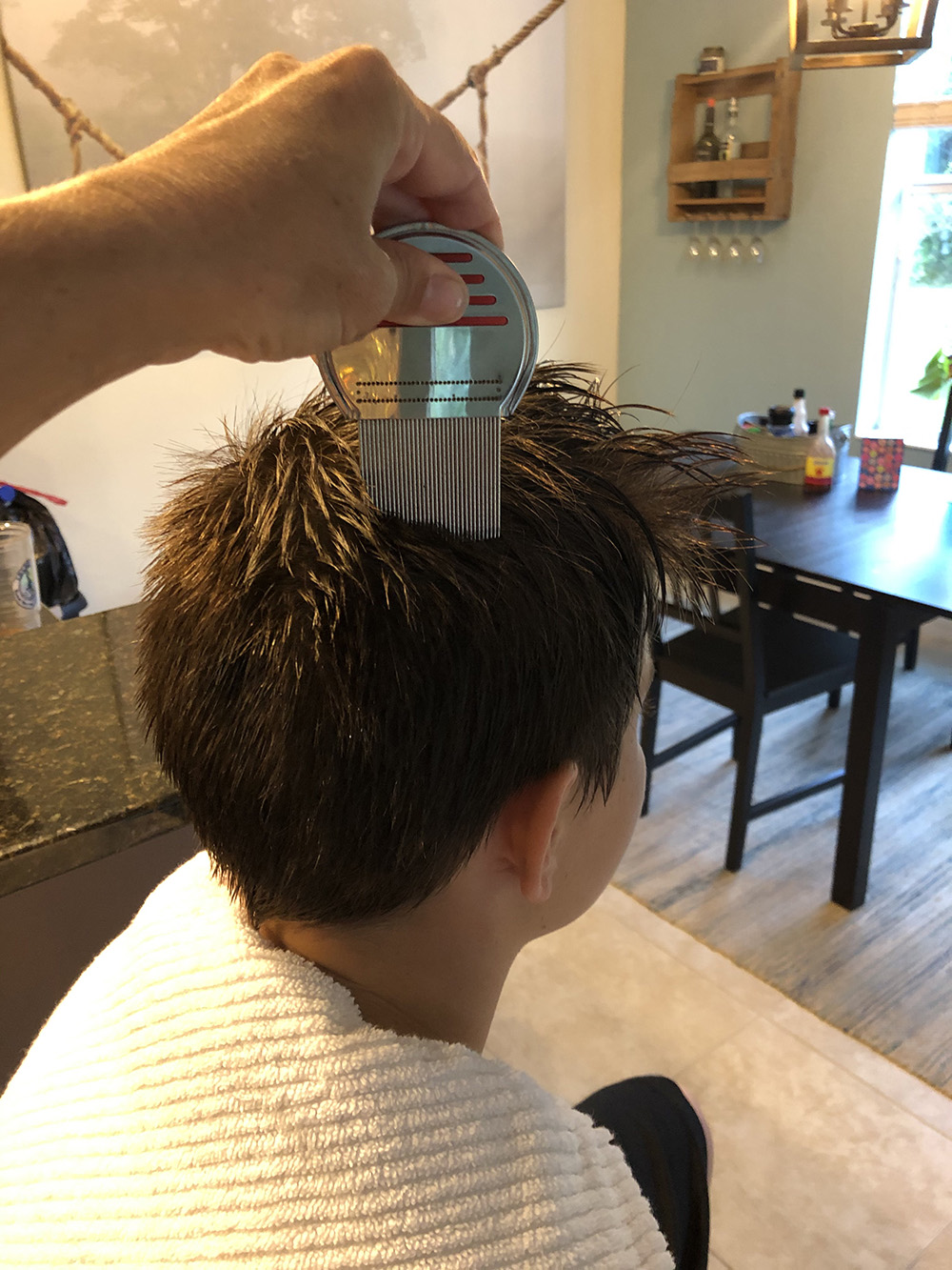 Lice Treatment in Bethesda and North Bethesda, MD