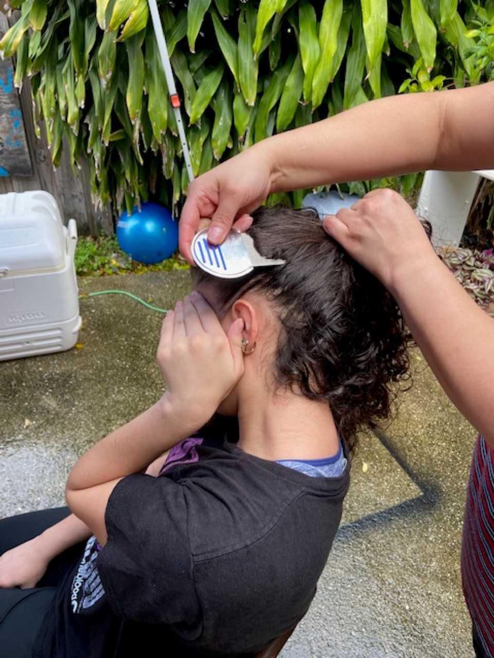Mobile Lice Doctor in Broward County, FL