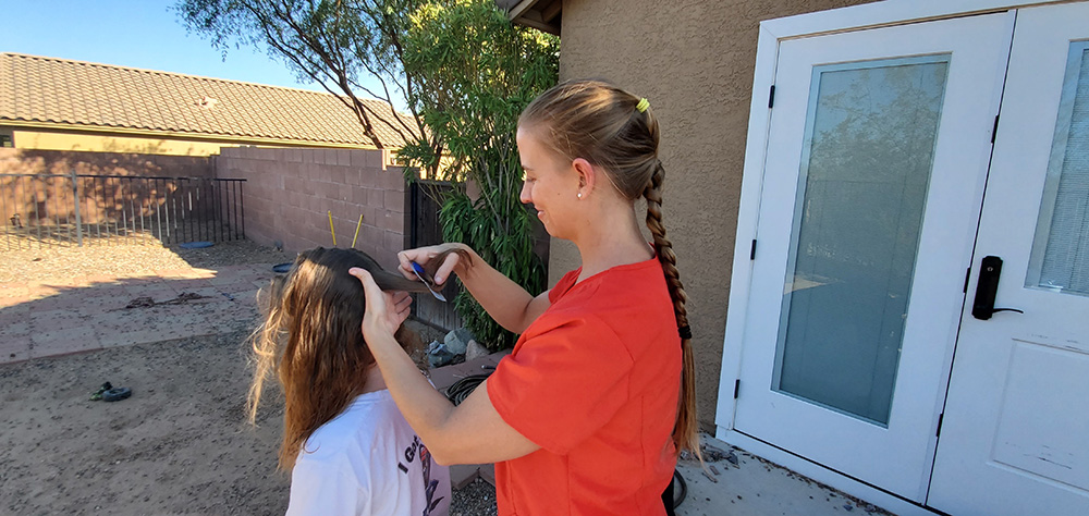 Mobile Lice Doctor in Catalina and Casas Adobes, AZ