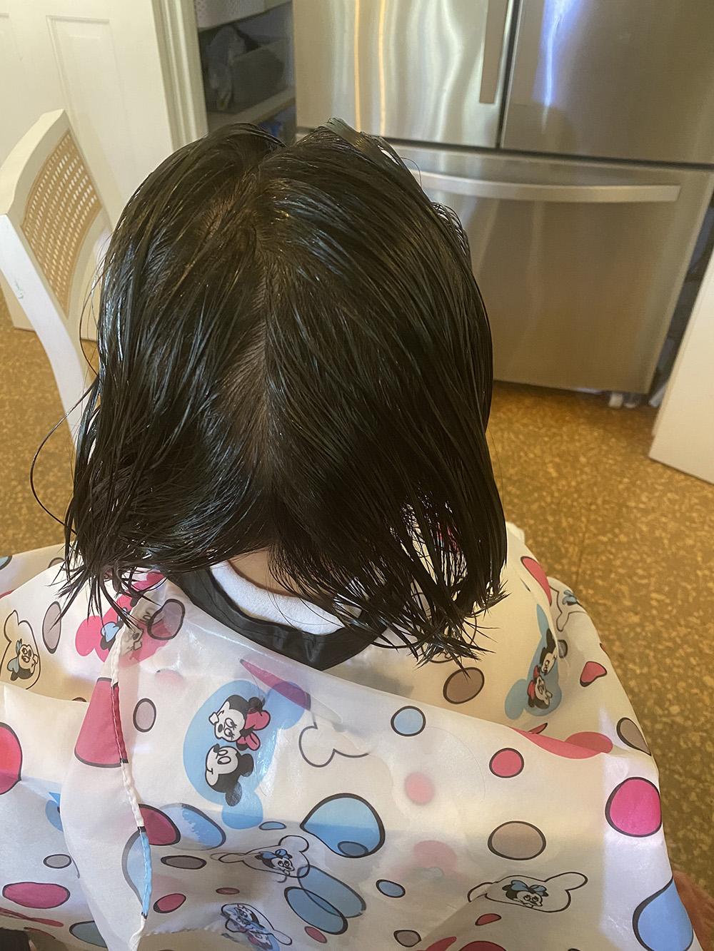 Lice Treatment in Massapequa and Babylon, NY