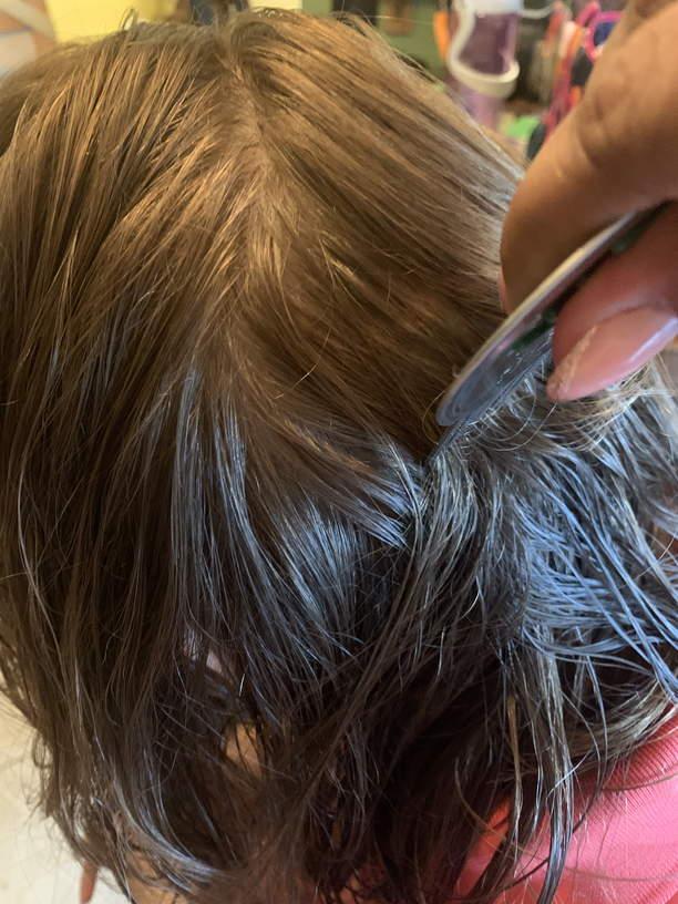 Lice Treatment in Pleasanton, Livermore, and San Ramon, CA
