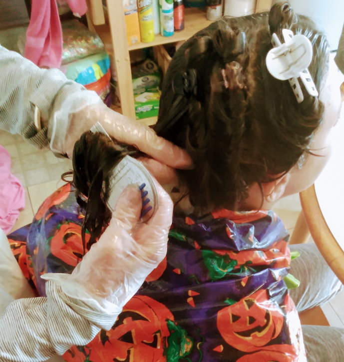 Mobile lice doctor in Palm Beach County, FL