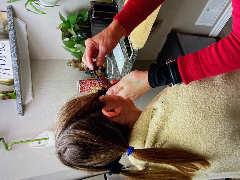 Mobile lice doctor in Greenwich and Stamford, CT