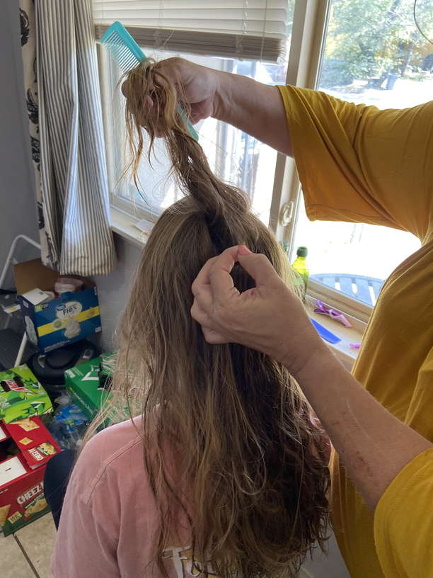 Lice Treatment in Temple and Belton, Texas