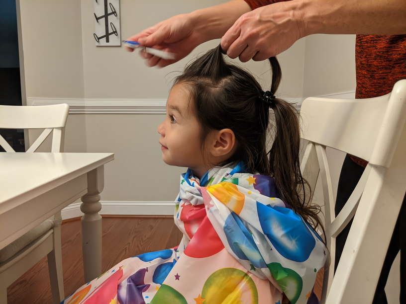 Lice Treatment in Raleigh and Durham, NC