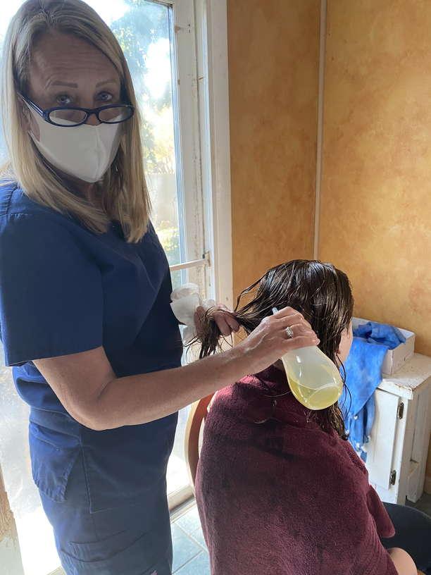 Lice Treatment in Palo Alto, Menlo Park, and Peninsula, CA