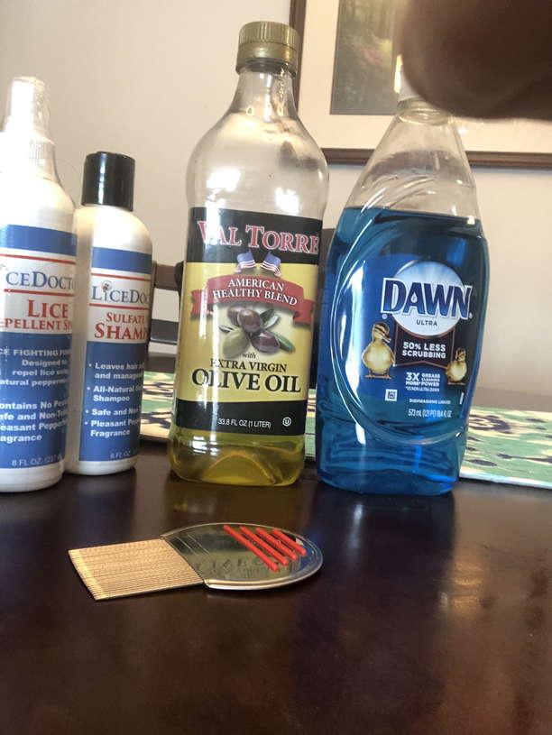Lice Treatment in North Royalton and Parma, Ohio