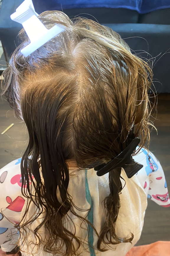 Lice Treatment in Spring Hill and Columbia, TN