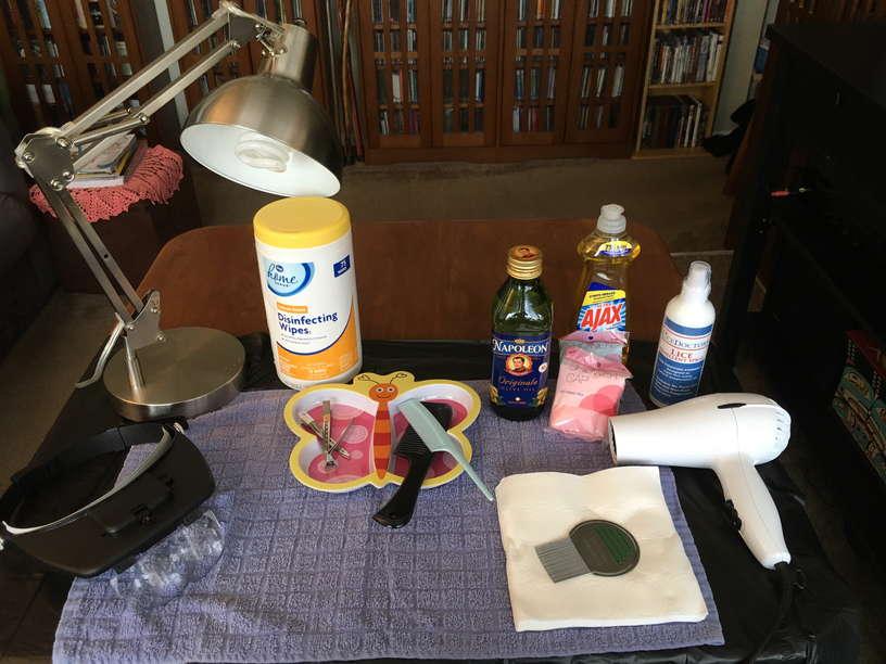 Lice Treatment in Puyallup and Auburn, WA