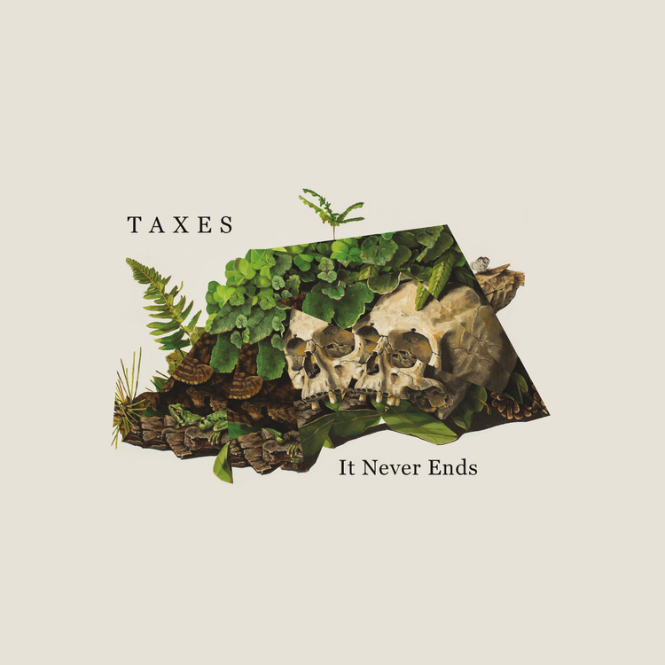 Taxes Album Art
