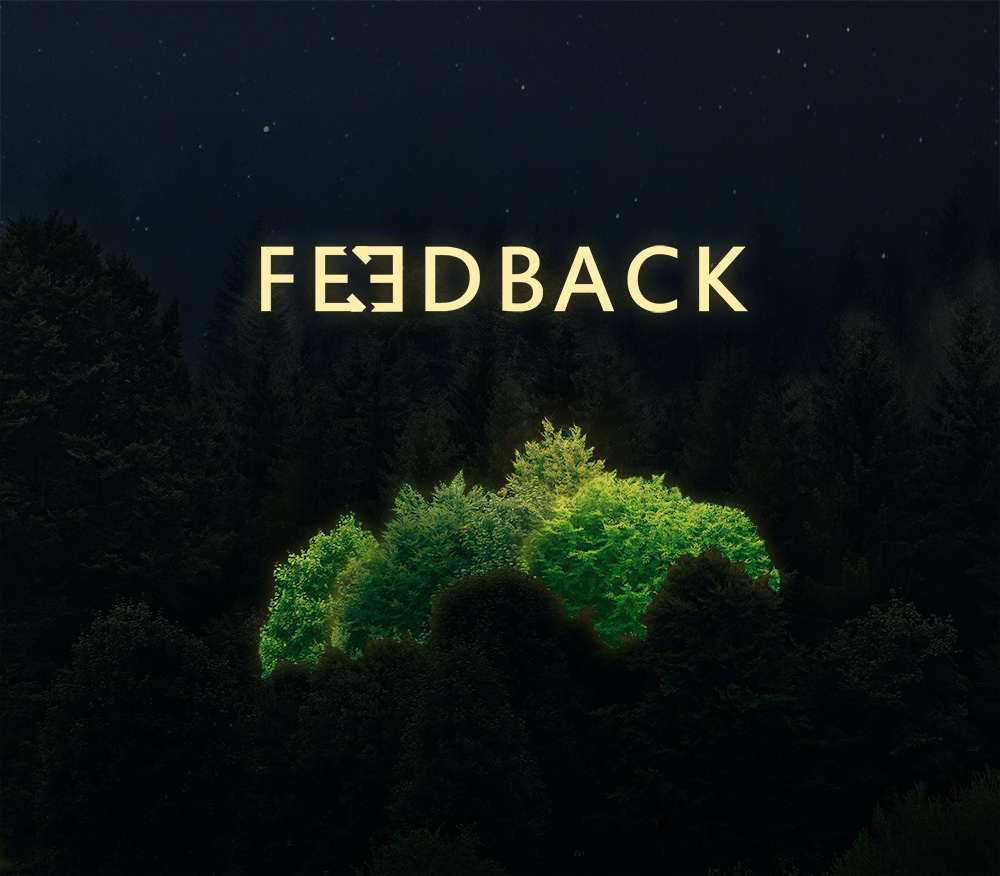 An overhead photo of a forest at night with the center tree lit up brighter green. The text reads Feedback