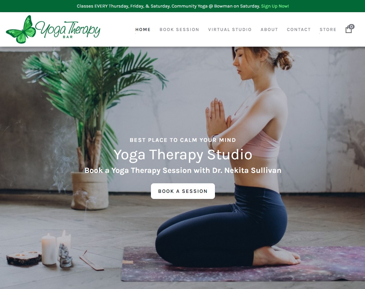 Screenshot of the Yoga Therapy Bar Website