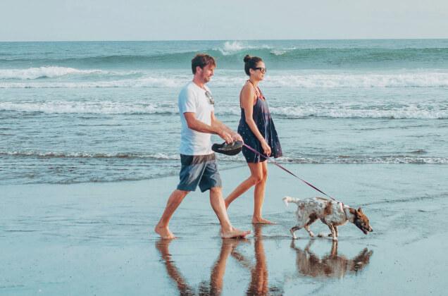 Para ludzi idąca plażą z psem