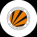 Lovely Professional University Logo
