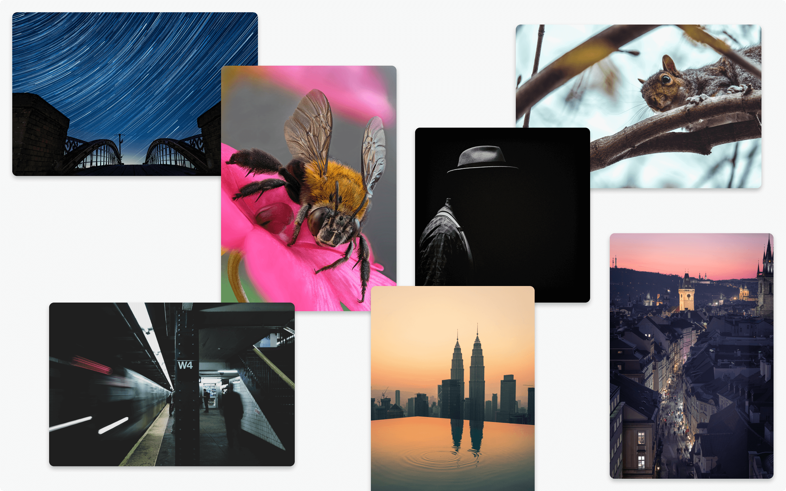 Montage of images captured with mirrorless camers