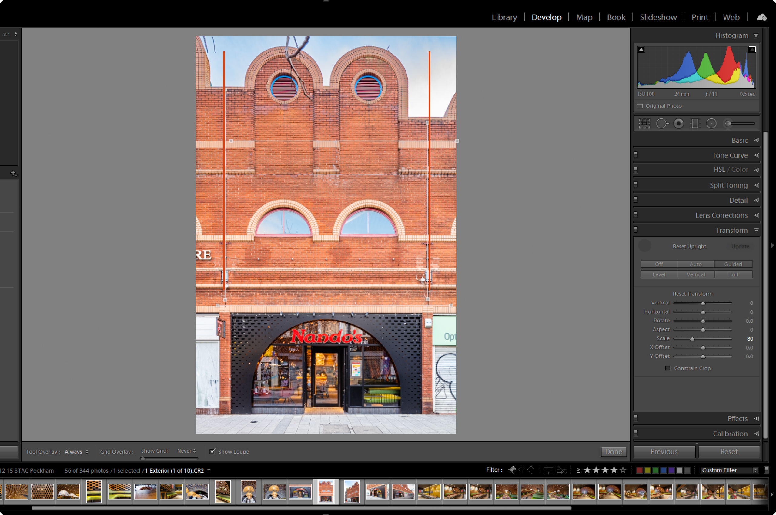 Image with added guides in Lightroom screenshot