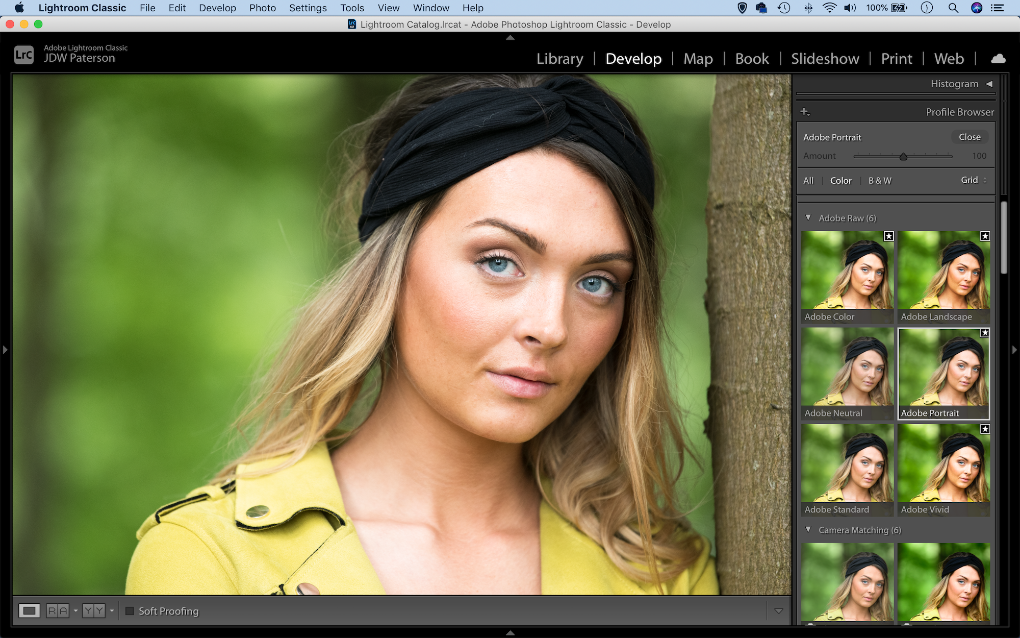 Screenshot of the profile browser in Lightroom