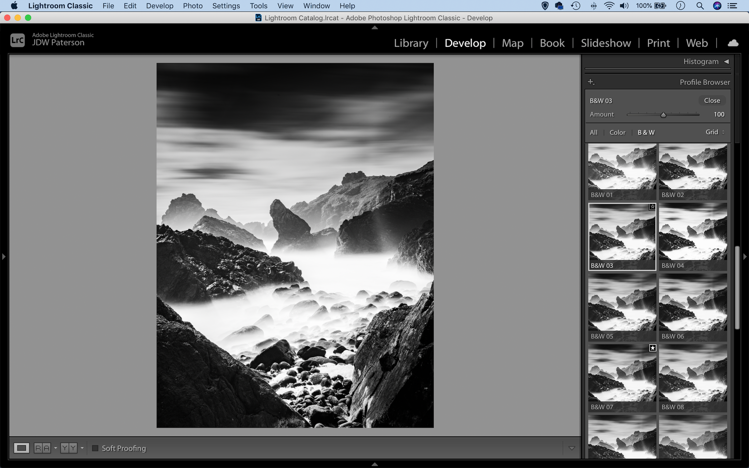 The black and white profile set in Lightroom