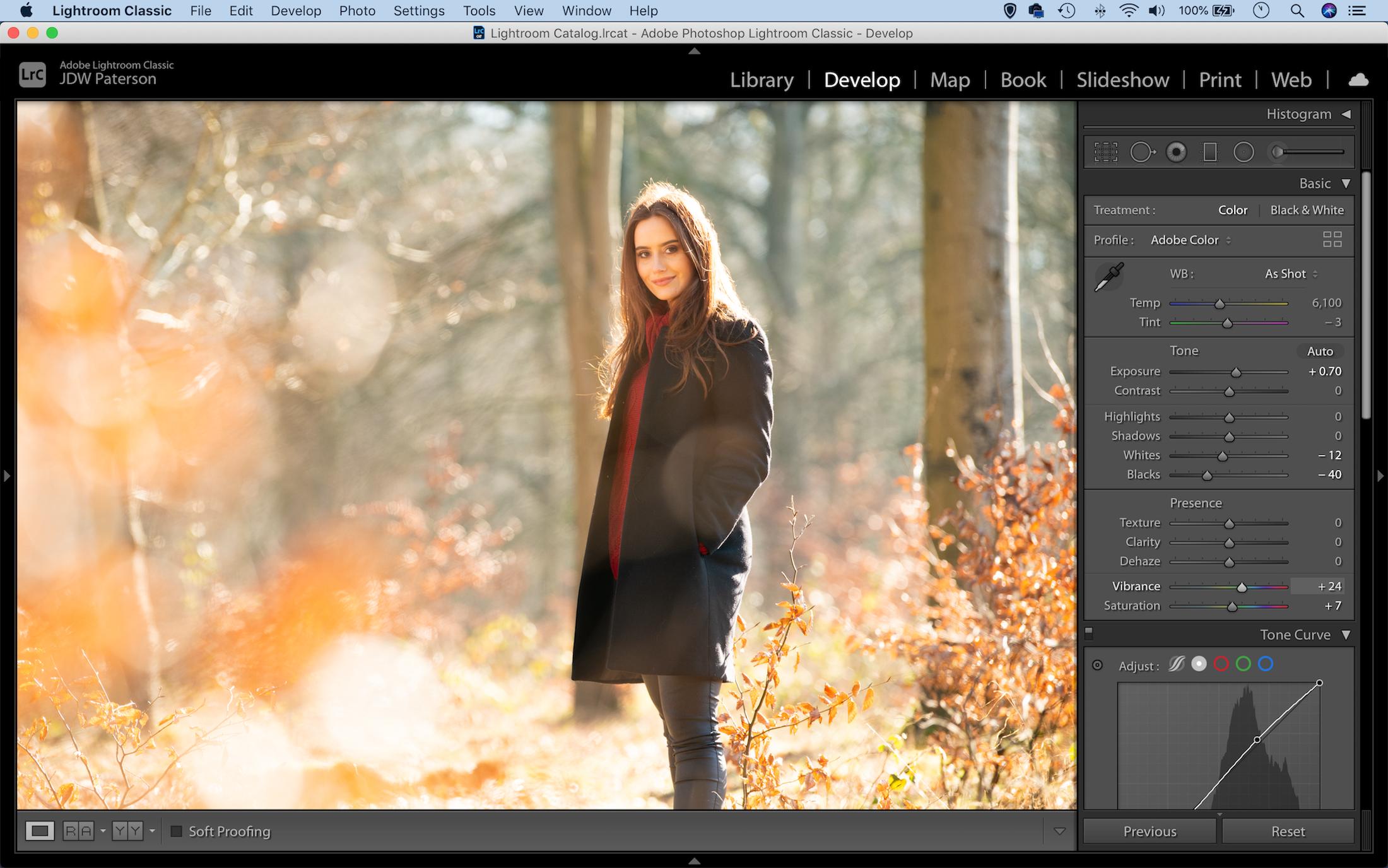 Adjusting the vibrancy of an image in Adobe Lightroom