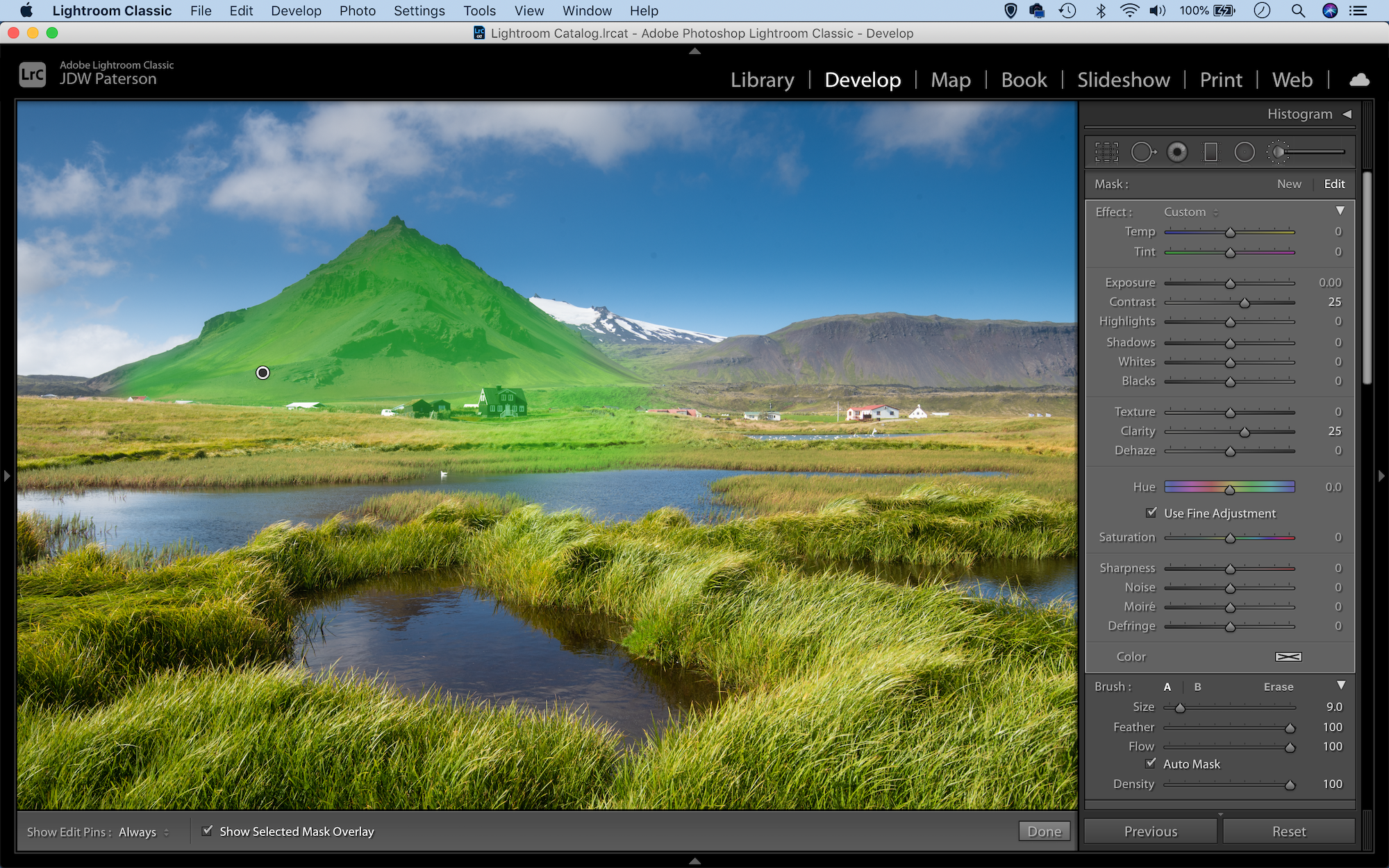 Using the adjustment brush with mask overlay in Lightroom