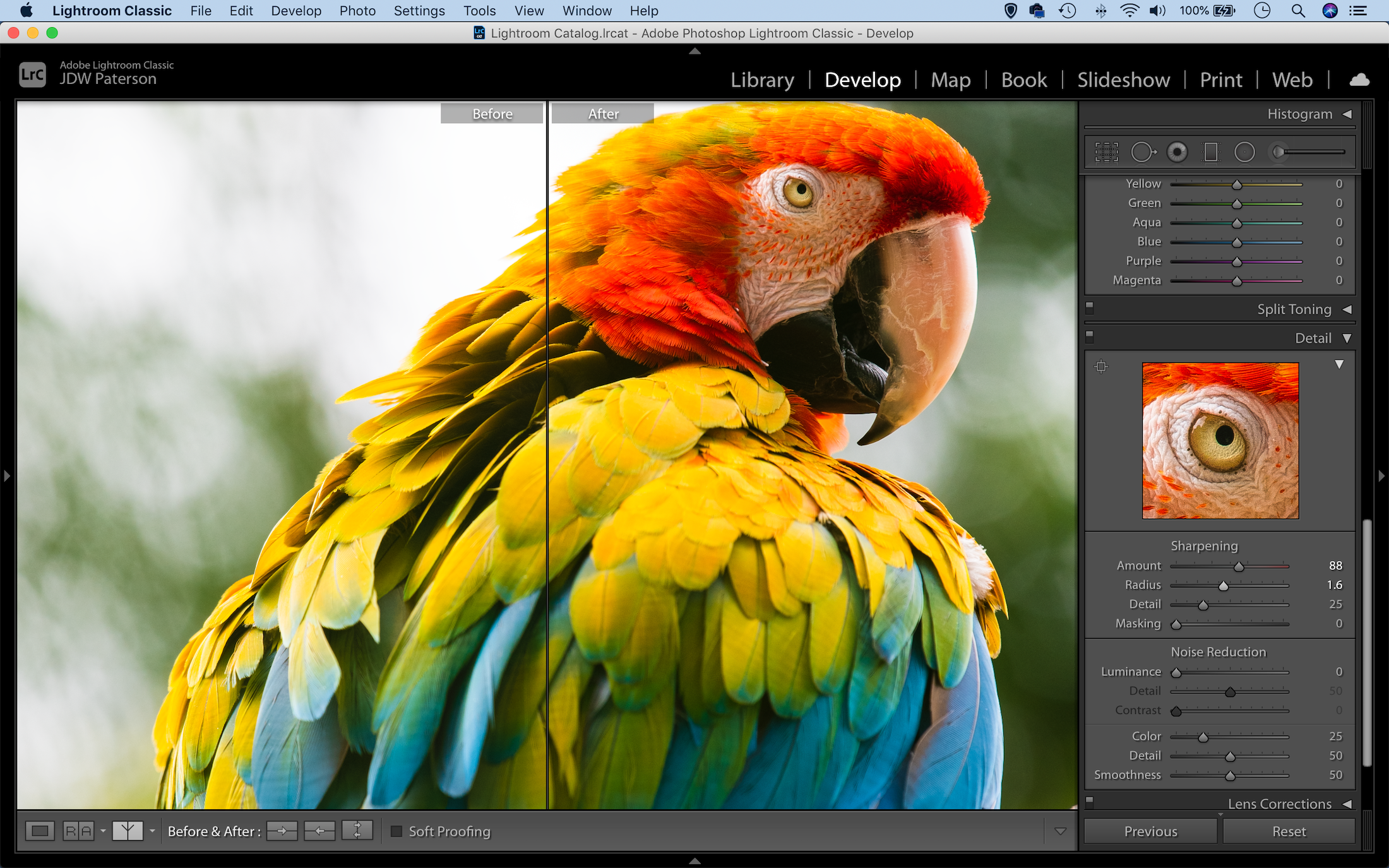 Before and after comparison with the sharpening tool in Lightroom