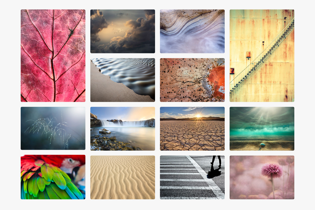 Montage of images that feature an element of texture