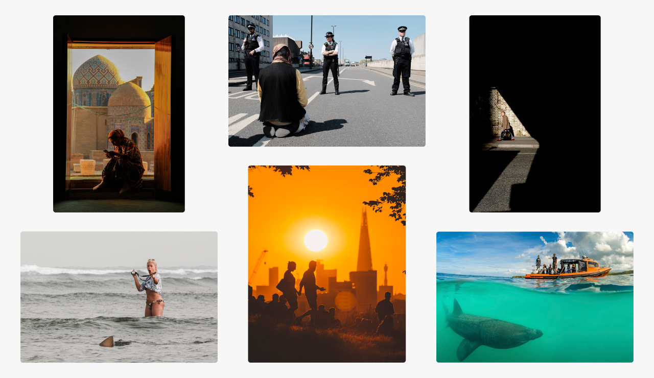 A range of images on Picfair that have been thoughtfully cropped to focus-in on the message of the image