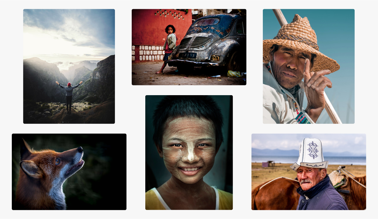 A series of portraits with an emphasis on how they have been cropped