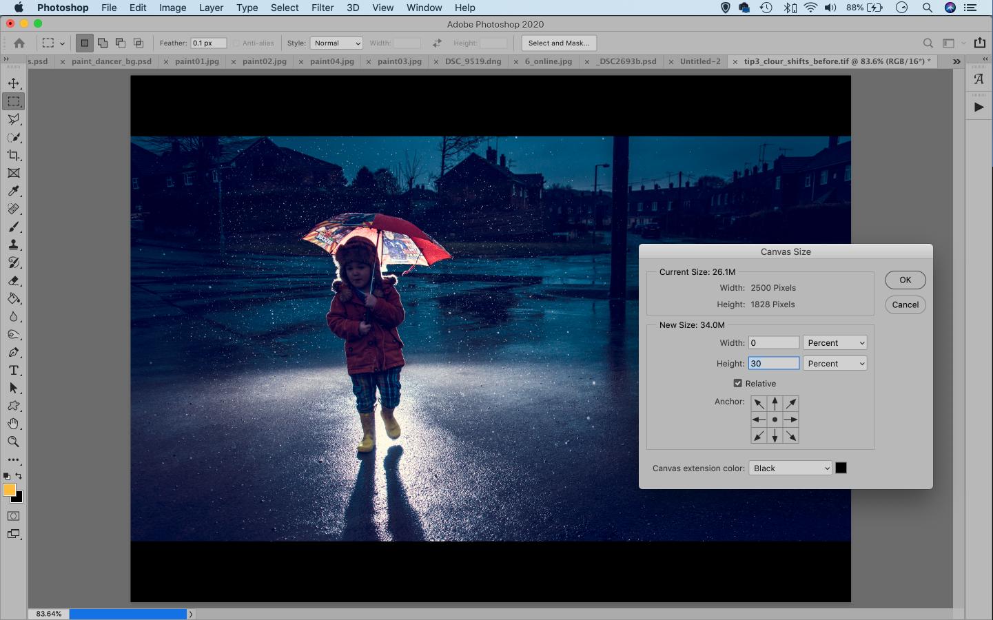 Screenshot of image cropping in Adobe Photoshop