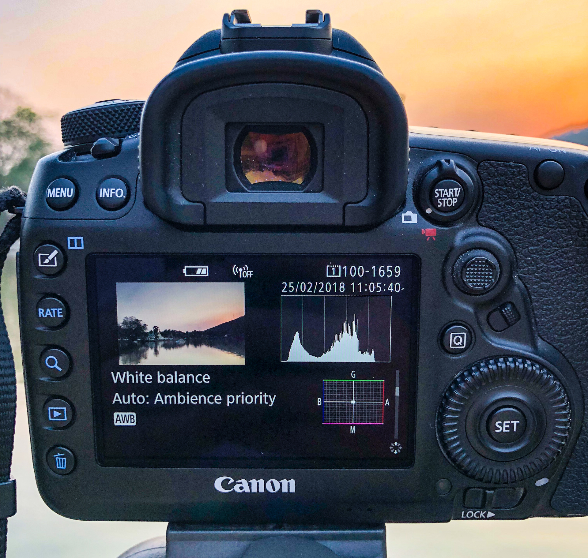 The LCD screen of a DSLR camera showing a histogram