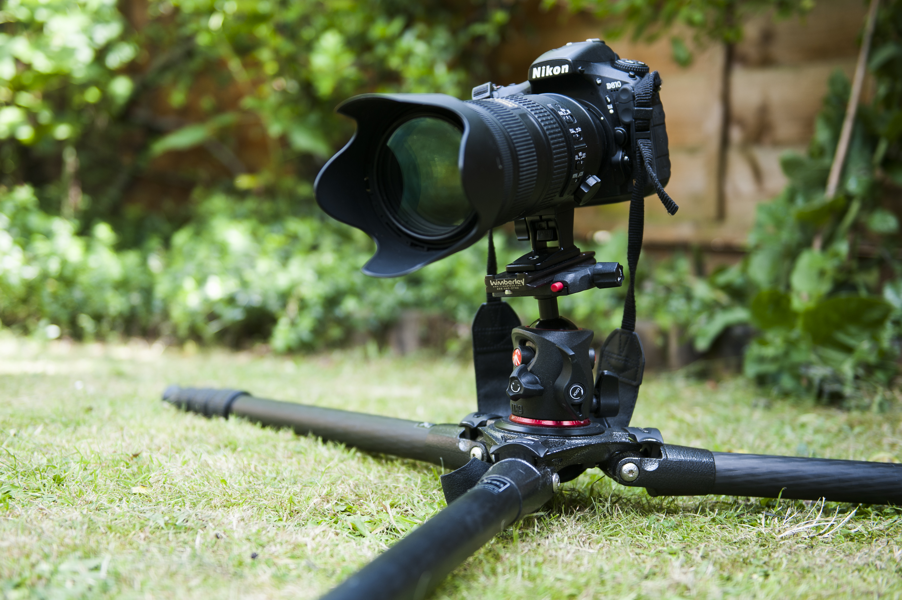 DSLR camera on a tripod placed close to ground level