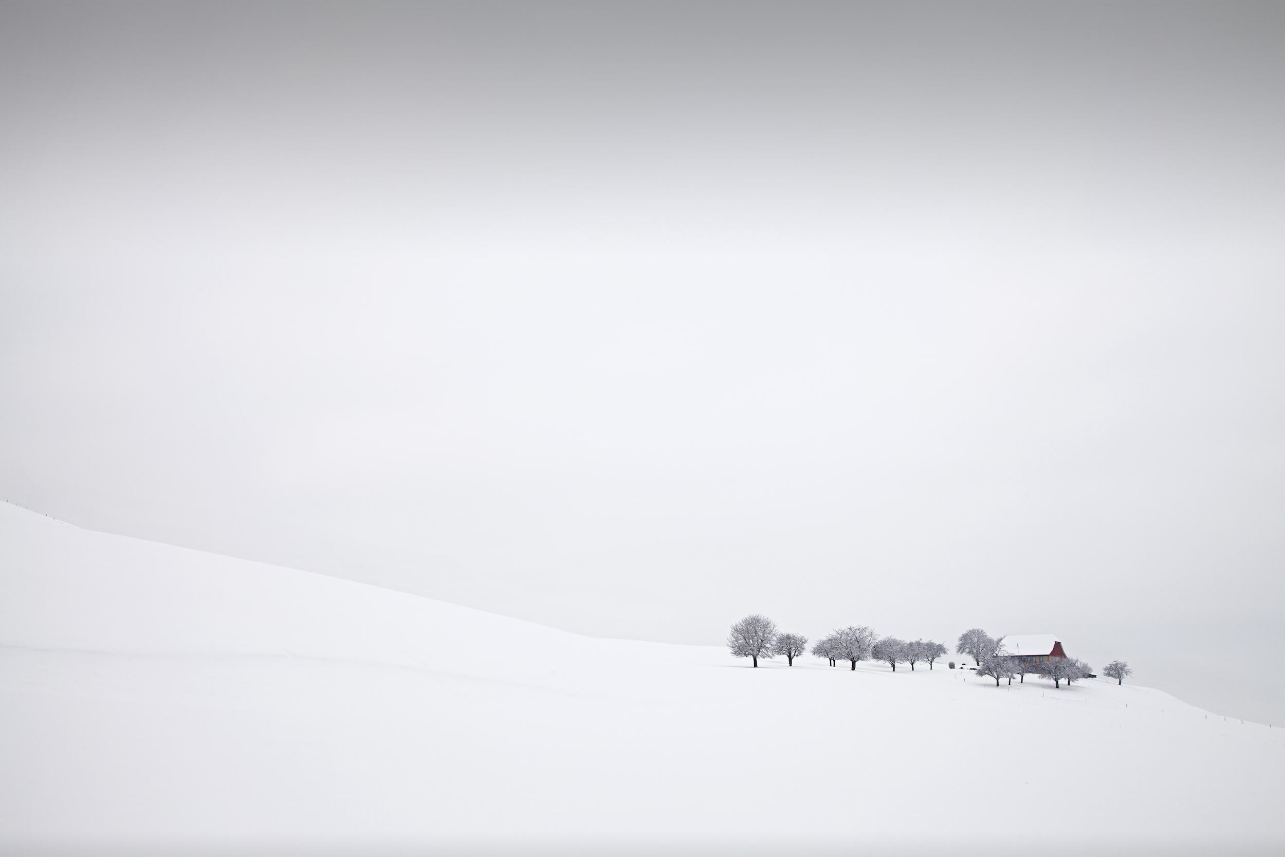 A red house and tress against a white winter landscape