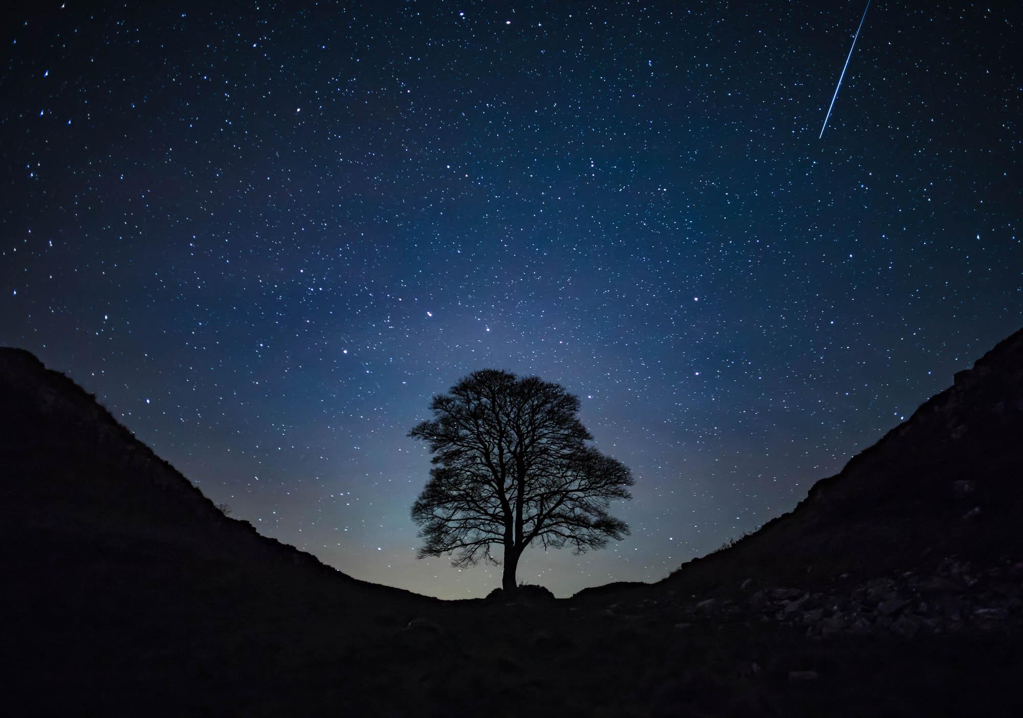 A shooting star over Sycamore Gap, Hadrian's Wall, Northumberland, England
