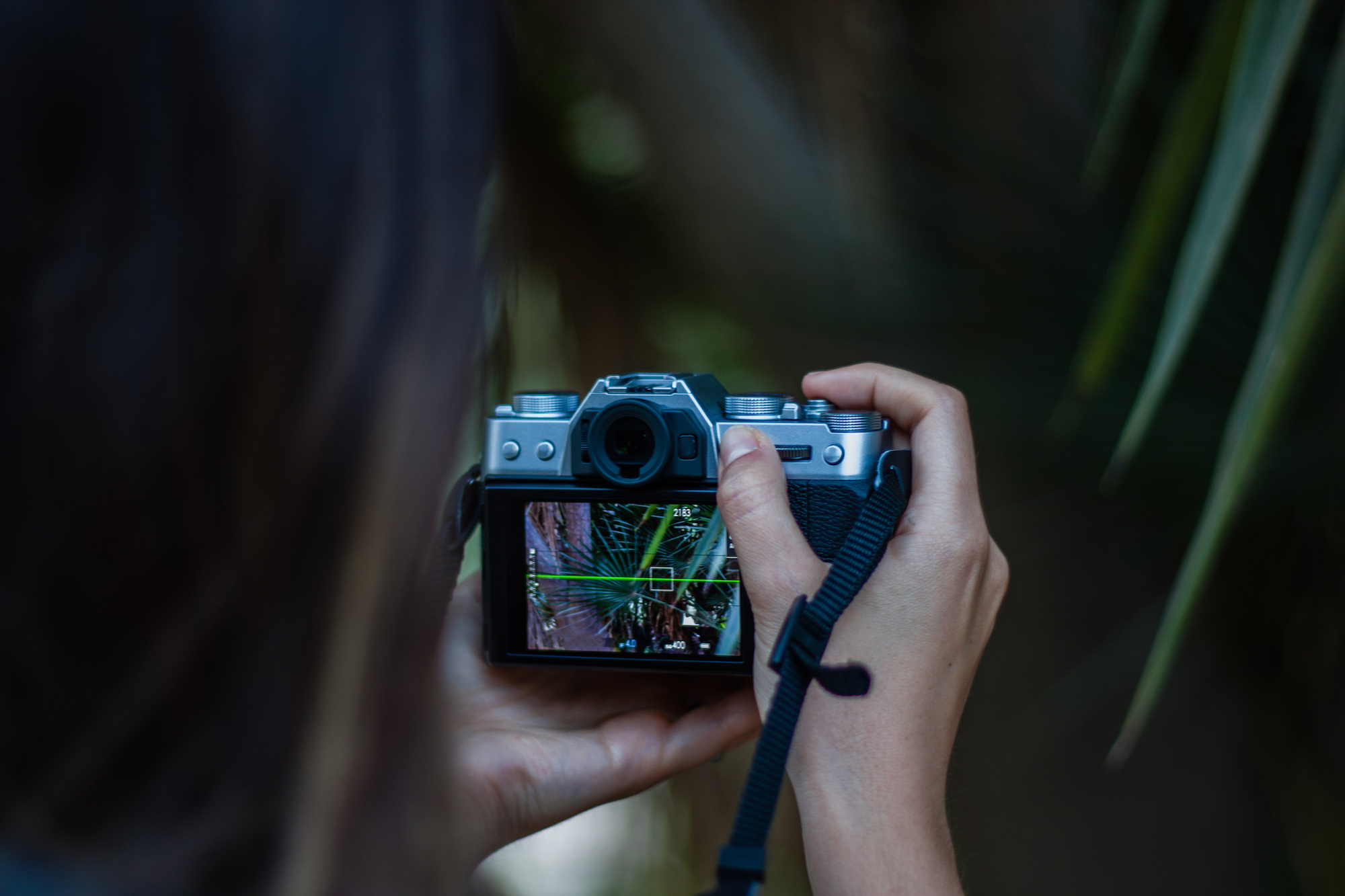 Taking a photo with a mirrorless camera