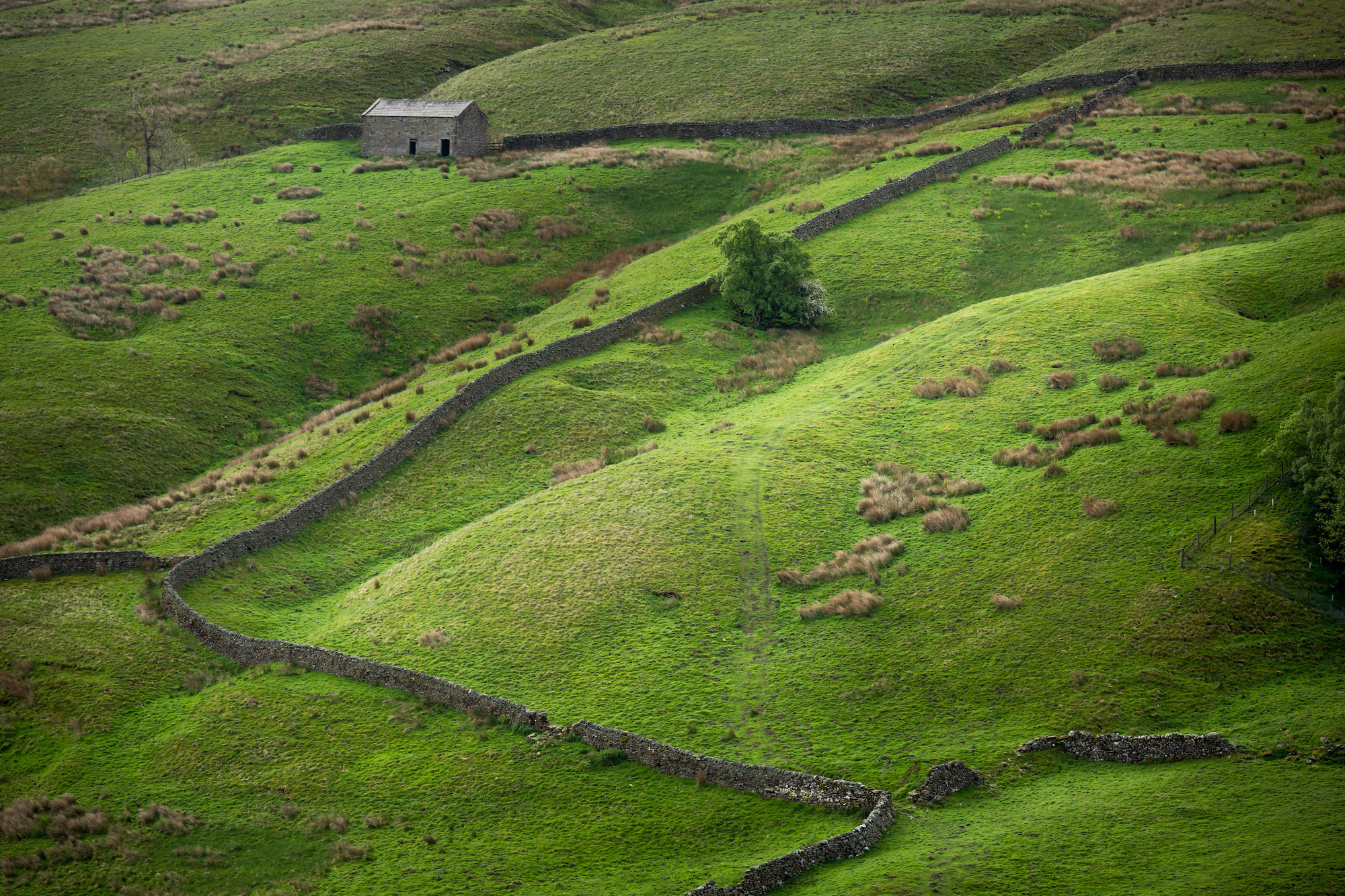Drystone walls in Horsehouse in the Yorkshire Dales