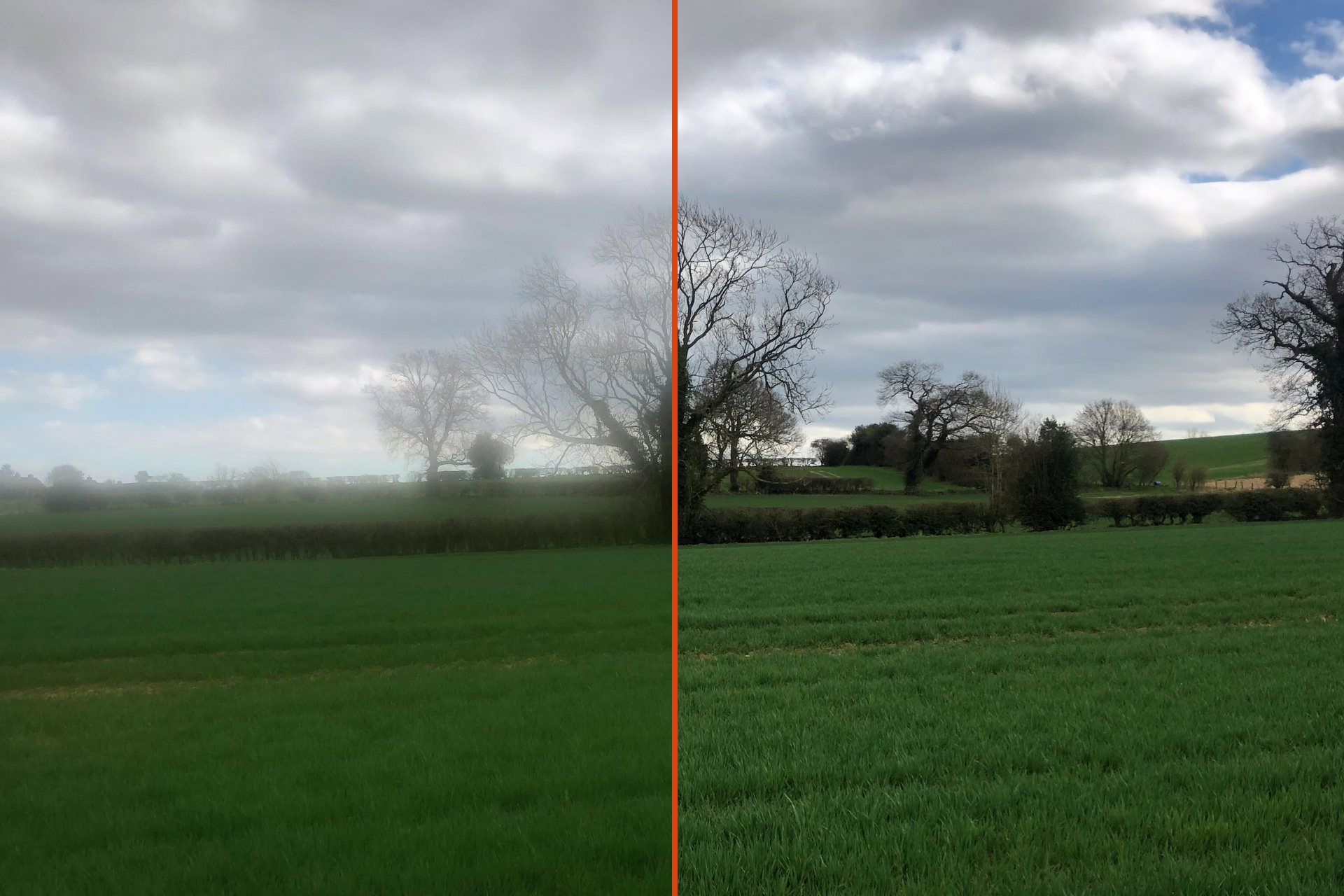 Split view showing a scene where the left is blurred due to a dirty lens and the right is sharp as the lens is clean