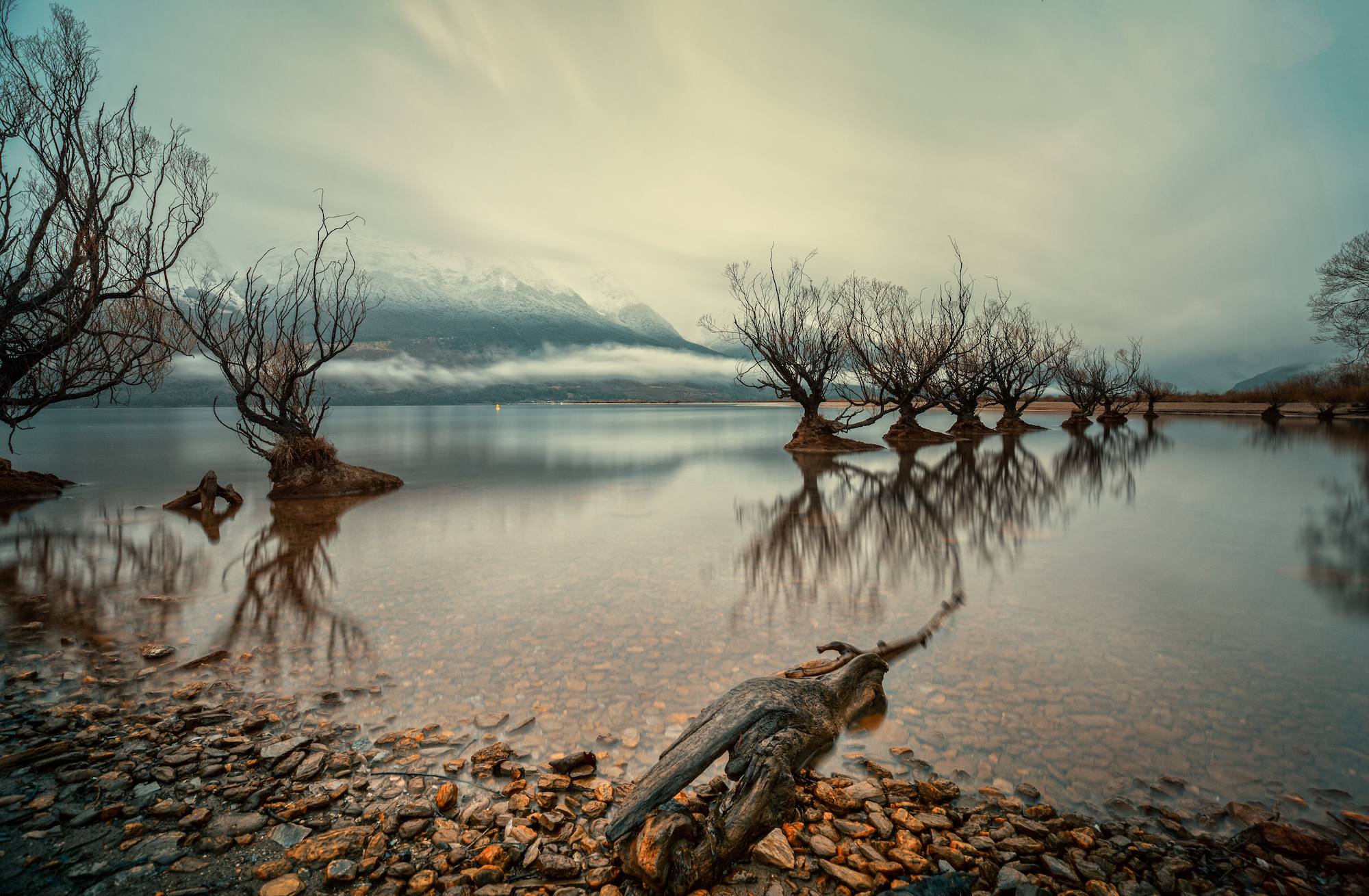 Landscape composition of the Willows of Glenorchy, New Zealand, on a moody rainy morning