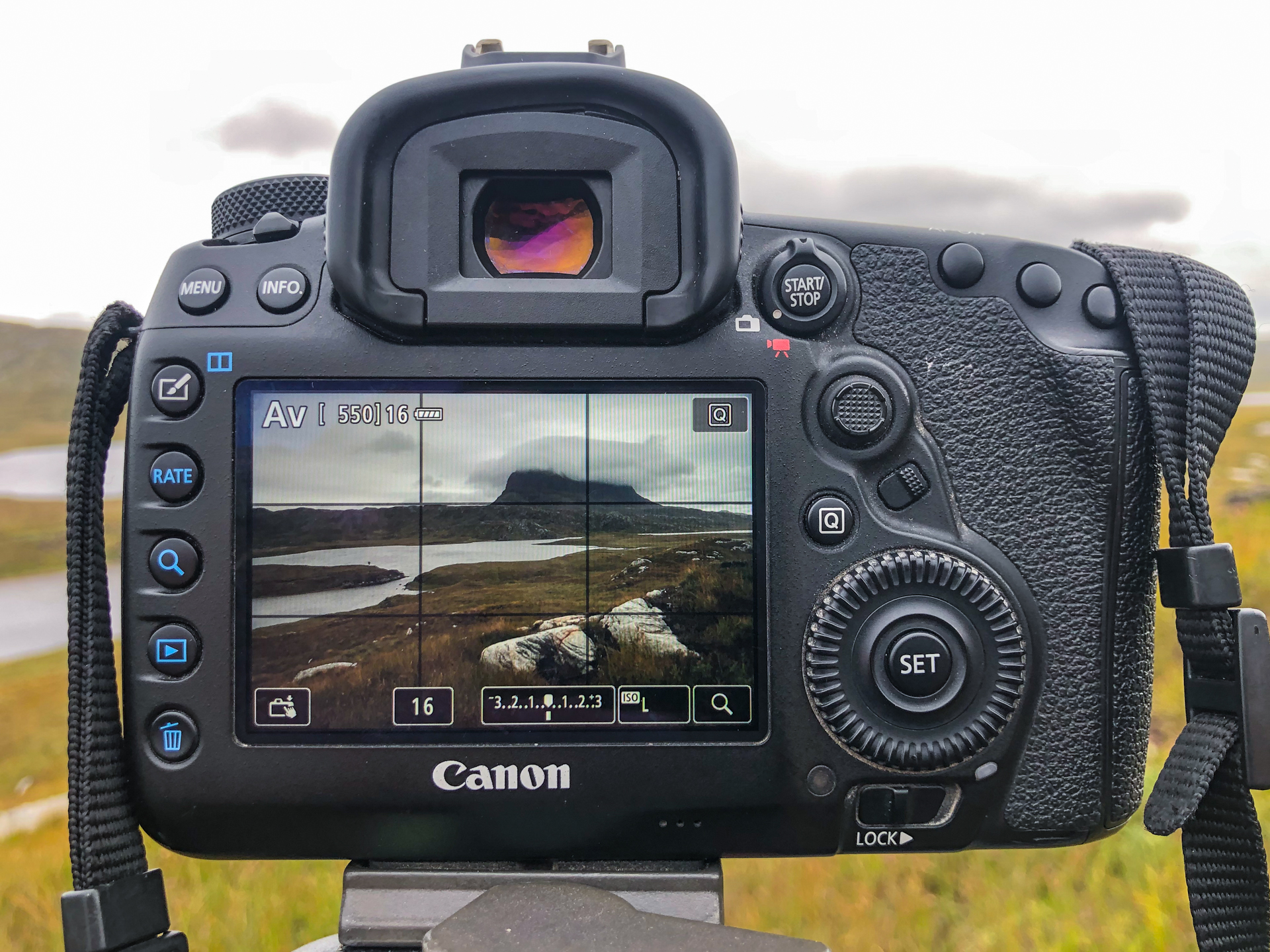 LCD view of a composition on the back of a digital camera with a Rule of Thirds overlay